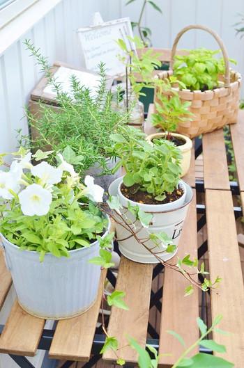 既製品のテーブルの上にお花やグリーンを並べるだけでもとっても素敵♪あえてバラバラの鉢に入れても可愛いですね。