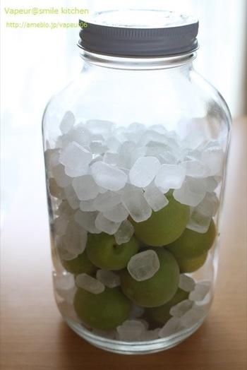 1~1ヶ月半程度で梅の実を取り出し、その後は「冷蔵保存」。梅の実は10日で取り出すというレシピもありますので、毎日状態をよく確かめてください。半年から1年で飲み切りましょう。