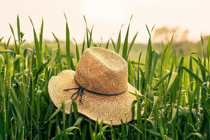 日差しがどんどん強くなってくるこれからの季節、さっとかぶるだけでおしゃれに見え、紫外線もさえぎってくれる帽子があると重宝しますよね。
