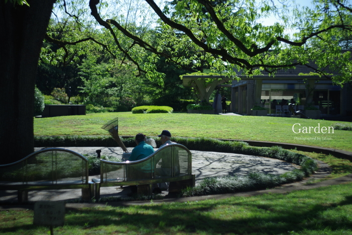 世田谷区にある砧公園の一角にある「世田谷美術館」。恵まれた環境と、自然とうまく調和した建物を生かした幅広いジャンルの企画展やイベントが行われます。季節ごとの美しさを楽しみに、何度も訪れたいところです。