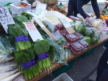 小松菜やトマトなど朝採れの鎌倉野菜なども新鮮でおいしそう!