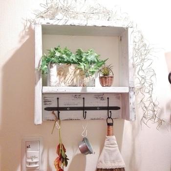 ミニグリーンを棚にディスプレイ。セリアのアイアンフックを使って作られた棚なんだそう。