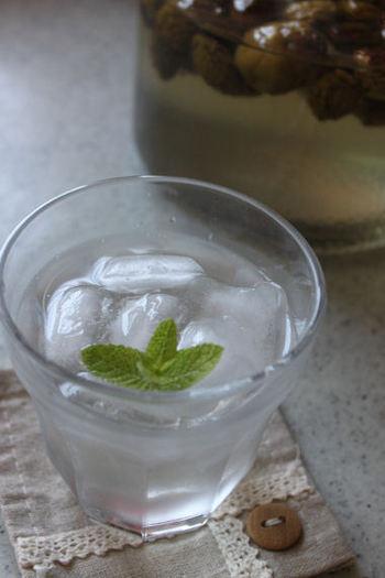 夏に特におすすめの「ソーダ割り」。シュワっと爽やかな飲み心地はクセになります。