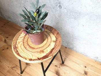 低めのスツールに植物の組み合わせは、空間を圧迫しません。 壁や窓の近くに、おしゃれに飾ってみては?