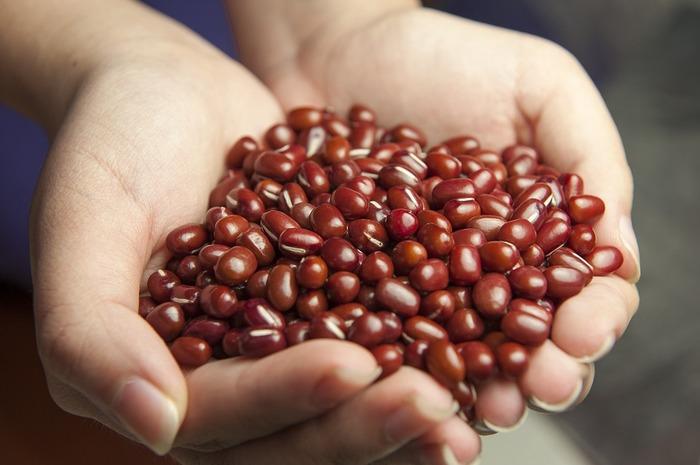"""""""赤い""""豆のグループには「金時豆」や「赤えんどう」、「小豆」などがあります。"""