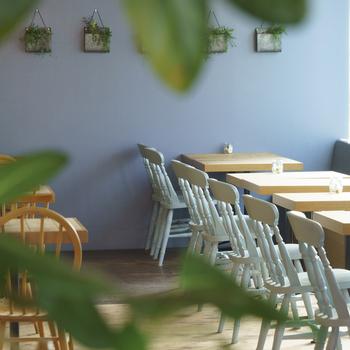 大きな窓から光が降り注ぐ、気持ちの良い空間です。淡い木目のテーブルとグリーンが温かい雰囲気で、ほっこりします。