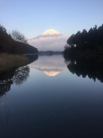 1384年に富士山本宮浅間大社神主の田貫次郎実長がこの地に隠居したことから『田貫沼』と呼ばれ、その後、『田貫湖』と呼ばれるようになりました。広く静かな湖から、富士山がそびえ、風のない穏やかな日には、湖に富士山の姿が鏡のように映り、とても神秘的なんです。