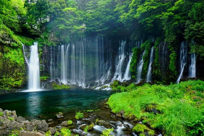 国の名勝と天然記念物に指定されている『白糸の滝』。「観光百選滝の部」で1位に選ばれたこともある滝で、富士山から流れ落ちる滝が、岩壁の間から白い絹糸のように美しく流れています。マイナスイオンにつつまれて、気持ちもリフレッシュしますよ。