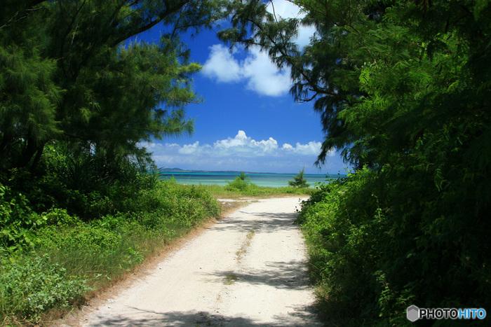 せっかく沖縄本島まで来たのなら、是非ともこの離島まで足をのばしてみてしょう。沖縄の本当の海の青さ、美しさは離島にあります。日本とは思えないような「ケラマブルー」の海をその瞳で確かめてみてください。