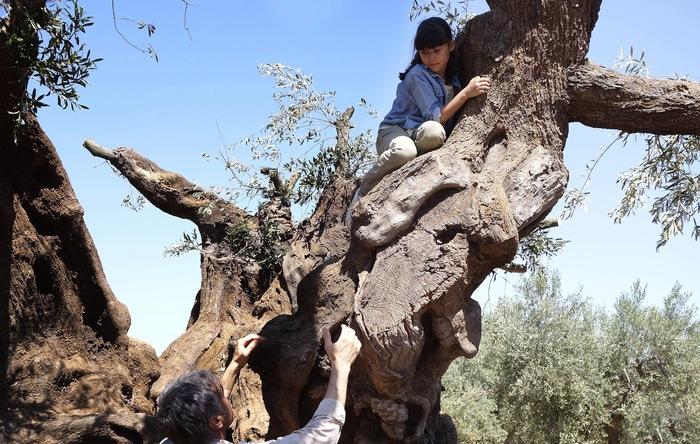 情熱的で無鉄砲ながらも、大好きな祖父のためにオリーブの樹を取り返そうと旅に出るアルマと仲間たち。未来に希望を感じさせる温かなストーリーは必見です。ぜひご覧になって、キャンペーンにも参加してくださいね。