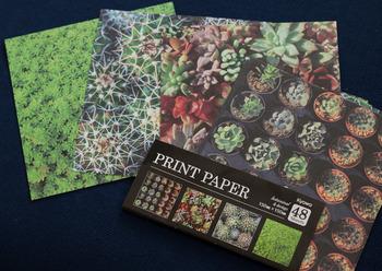 セリアにはこんなサボテン柄の折り紙も!折り紙自体が可愛いので、どんなものを折ってもおしゃれになりそう♪