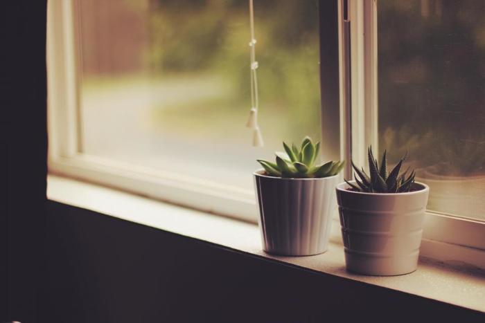 観葉植物や多肉植物のフェイクグリーンをさしておくと、お部屋のアクセントに。