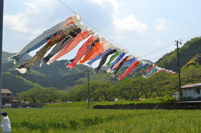 温暖な気候にめぐまれた松崎町では、いつ訪れても「日本の原風景」ともいえる美しい風景が広がっています。