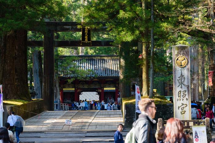 最初に訪れたいのが世界遺産・日光東照宮。徳川初代将軍「徳川家康公」が祀られた神社で、日本有数のパワースポットとして知られ、連日多くの参拝客で賑わっています。