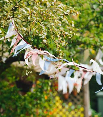 切った時の切り口が湿ると病気や害虫の原因となるので乾燥しやすい晴れの日がおすすめ。