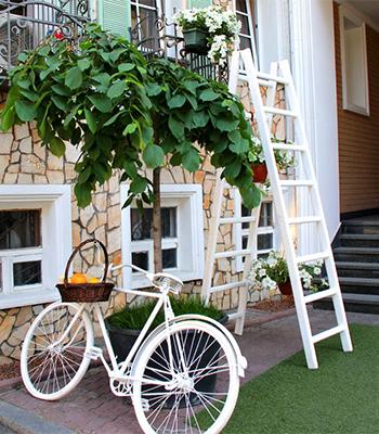 限られた空間でも上手に鉢を活用して、雰囲気あるお庭を作るのも素敵。