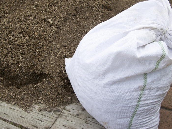 大きなプランターがない場合は培養土の袋ごとプランター代わりにすることもできますよ。下のリンク先の方法を参考にしてみてくださいね。
