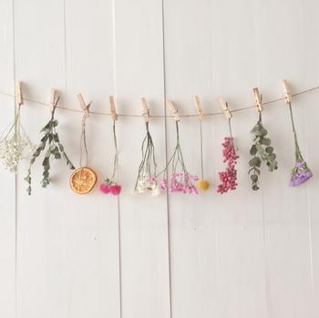 1束ずつ吊り下げるだけで可愛らしい雰囲気に。花、葉っぱ、実。そして、赤、黄色、緑・・・など、形も色もさまざまな顔ぶれが可憐で賑やか◎ お部屋をぐっと明るくしてくれます。