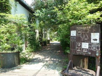 広い敷地内には酒蔵やブリュワリーのほか、レストランやベーカリー&カフェが点在。湘南の風にそよぐ緑の中を進んで、美味しいビールを味わいに行きましょう。