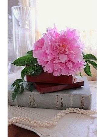 お庭に初めて咲いた芍薬(しゃくやく)を、朱色の重箱に。 水に強いウレタン塗装の重箱に水を張り、アクリルの透明な石を敷き詰めて、茎を固定したそう。