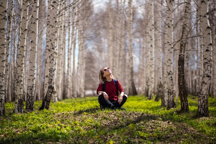 涼しい森を歩いてみない?緑のチカラで心と体を癒す「森林セラピー」