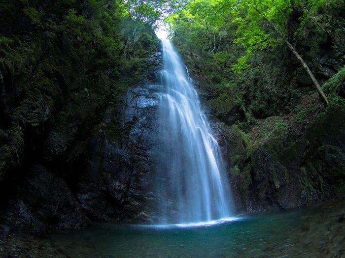 【川苔谷、百尋ノ滝探勝路】(約1時間50分・約1.8km )4月~11月/しっかりレベル 「日本水源の森百選」にも選ばれる百尋ノ滝など、奥多摩を代表する滝を巡ります。滝や渓流のマイナスイオンでたっぷりと癒されるコースです。