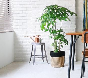 ジュートのジグザグとした質感が観葉植物にぴったり。夏は涼しげな印象になってよいですね。モダンなインテリアにも、ナチュラルテイストのお部屋にも合わせやすいデザインです。