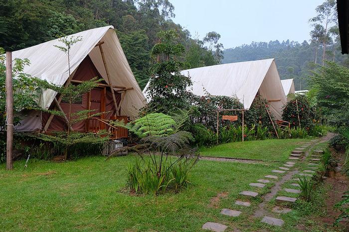 例えば寝泊りする場所を上質にしたグランピングなら、設備が整ったコテージやベッドなどのあるテントに泊まることができるのが魅力。テントや寝袋はもちろん、調理器具などの荷物を持たずに気軽に出かけられます。