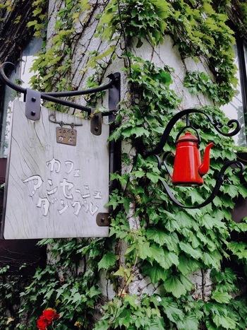 蔦に覆われた「アンセーニュダングル 原宿店」。かわいらしい赤のポットが目印です。