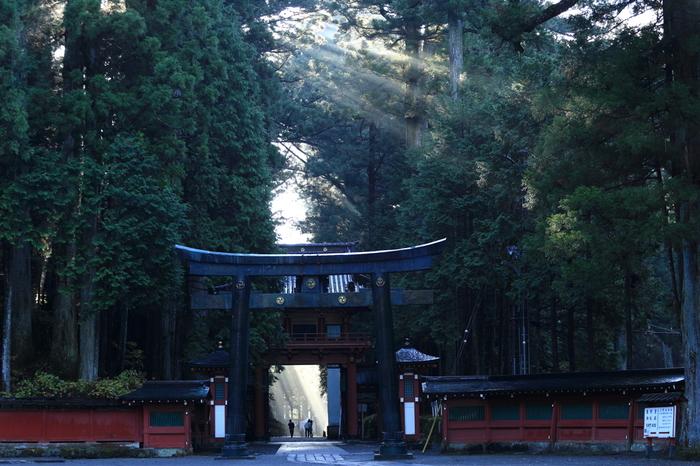 定番の観光地・日光が、東照宮の修復を機に再び注目を集めています。世界遺産に登録されている日光の社寺全てを巡るのは大変ですが、見どころをギュッとまとめてまわるだけでも十分に歴史の奥深さを感じられそうです。この機会に、ぜひ日光へ出かけてみてはいかがでしょうか。