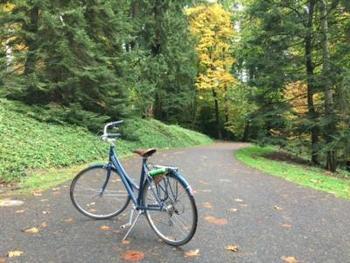 ポートランドの街はとってもコンパクト。緑豊かな美しい街並みは、どこを切り取ってもフォトジェニックです。「全米でもっとも自転車に優しい街」とも言われているので、レンタサイクルで街を巡るのもオススメです。