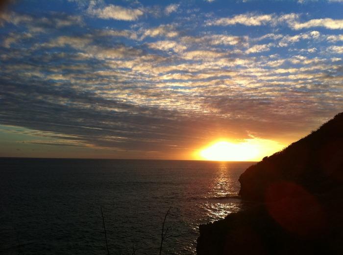 夕陽も美しい母島。運が良ければ、海に沈んでいく太陽の中に照らされたクジラの跳躍を見ることができるかも。