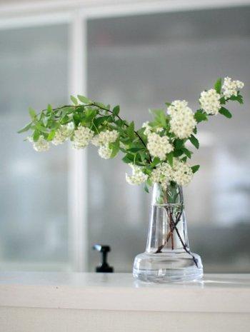 ガラスの花瓶に生花を活けると、清潔感のある印象に。毎日必ず立つ場所だからこそ、季節のお花を飾って四季を楽しむのもステキですね。沢山飾ろうとすると大変なので、一輪挿しなどで楽しまれるのがおすすめです。