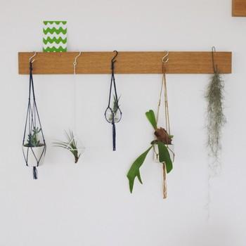 ■「良品生活」mujikko-RIEさん シンプルで清潔感あふれるリビング&キッチンを紹介させて頂いたmujikko-RIEさんの、壁面に飾られたグリーン達。いくつかのグリーンがランダムに飾られ、まるでお店のディスプレーの様なスペースに。