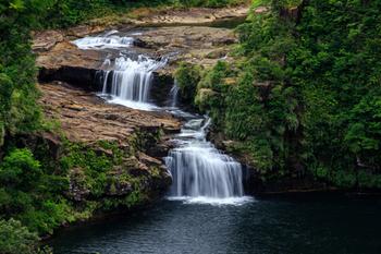 カヤックでマングローブの川を下ったり、マリュドゥの滝を見に行ったり。様々な体験ができそうですよね。