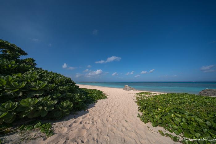 今回は夏の計画がまだ未定という方にもオススメの、素敵な離島をご紹介します。その島ならではの風景、大自然や生き物などと出会う旅案内、どうぞご覧ください!