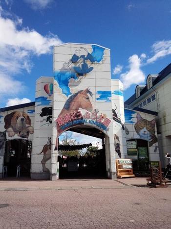 那須高原にある「那須どうぶつ王国」は、その名の通り動物と触れ合える施設。でも、ワンちゃんにも楽しいことがいっぱいです。