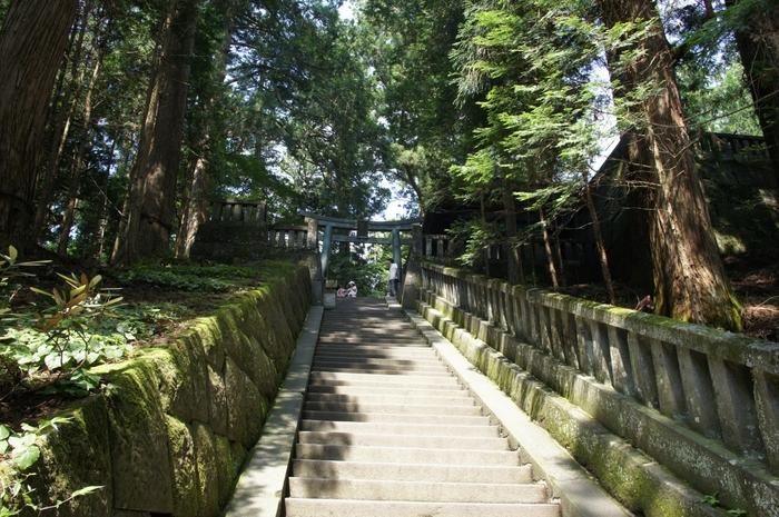 『眠り猫』の門をくぐった東照宮の最奥にあるのが、徳川家康の墓所『奥宮』です。途中の階段は約200段!折り返してしまうひとも多いそうですが、本社から奥宮までおよそ1時間ちょっとで巡ることができますので是非足を運んでみてくださいね。