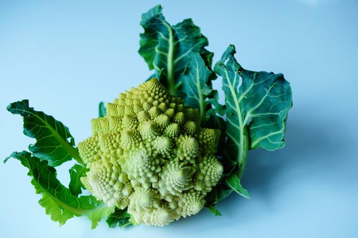 欧州で16世紀頃から作られるようになったアブラナ科の野菜です。最大の特徴は花の蕾の粒が集まった「花蕾(からい)」。かつては「悪魔の野菜」「神が人を試すために作った野菜」とも言われていたそう。ブロッコリーに似た味と食感で、茹でたり炒めたりして食べるのが一般的です。