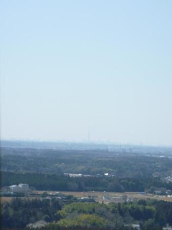 さぁ、最後は、エレベーターで行ける地上85mの「展望台」へ。ここからはスカイツリーが見えることも。気象条件が整えば富士山も見えるそうです。