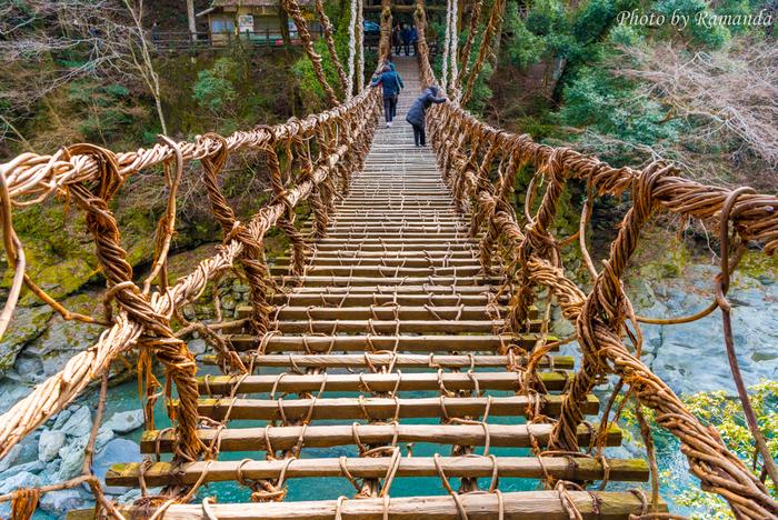 かずら橋は実際に人が歩いて渡ることができます。ゆらゆら揺れて、足元は隙間があり……高いところが苦手な方は渡るのは無理そう!?