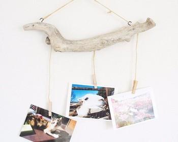 天然の流木の個性的な形をいかした壁掛けピンチです。お気に入りの写真やポストカードはもちろん、海などをイメージするものだとより夏らしい雰囲気に。
