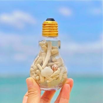 電球型の瓶に白砂ビーチの珊瑚礁をたくさん詰め込んだ置物。小さくても存在感バッチリなので、玄関や窓辺などのちょっとしたスペースに、夏の海の爽やかさを演出してくれます。