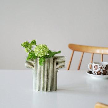 花瓶のグリーンの色合いと、どっしりとした安定感のある姿は、葉ぶりのある瑞々しい植物が似合います。