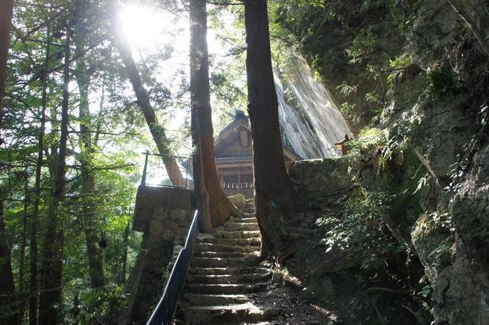 【奥多摩むかし道】(約4時間30分・約9km)通年/しっかりレベル 巨樹や渓谷、神社や道祖神などが点在する旧青梅街道をたどる、歴史好きの方におすすめのコース。写真は「白髭神社」。社殿に覆いかぶさるような高さ約30mの巨岩は都天然記念物に指定されています。