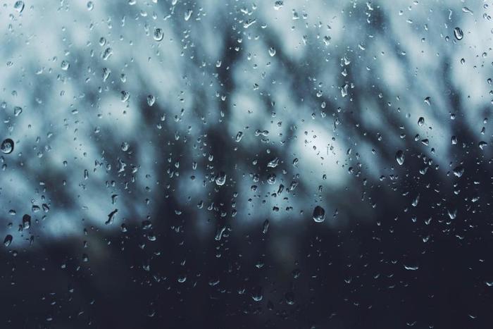 雨の休日は静かで、いつもと違う時間が流れます。