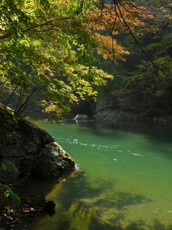 「青垣山をめぐらせて 天さかる鹿角」と、石川啄木が「鹿角の国を懐ふ歌」に詠んだ、秋田県鹿角市。ここでは4つのセラピーゾーンに8本の森林セラピーロードが設けられ、「かづの森林コンダクター」のガイドのもとで森歩きを楽しめます。セラピーロードのひとつが「湯瀬渓谷ゾーン」の「湯瀬渓谷」。米代川のせせらぎや峡谷美を楽しみながら、名湯・湯瀬温泉に憩うことのできる癒しの道です。