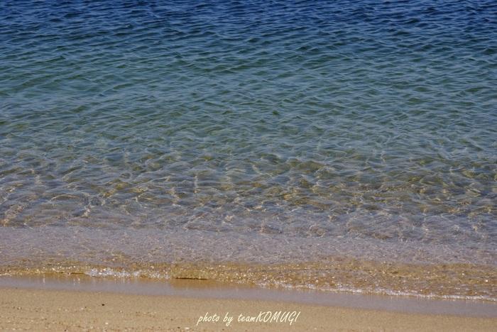 海や山が織り成す風景が美しい須磨。季節ごとに咲き誇る花々や、源平ゆかりの史跡、海の生き物達とのふれあいなど様々な魅力に溢れています。ぜひ夏休みのおでかけ先の候補にしてくださいね。