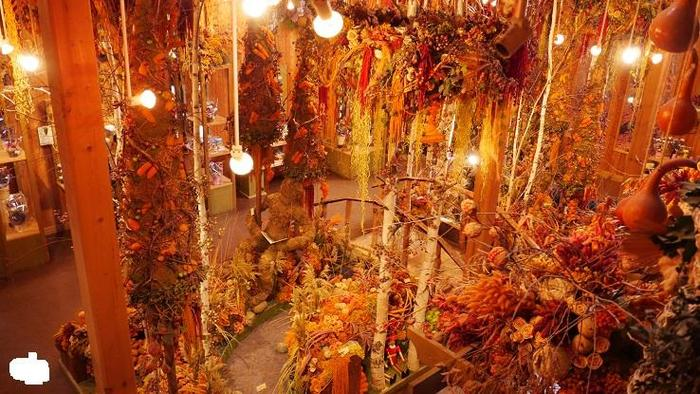 こちらはドライフラワーの舎。館内はドライフラワーのジャングルのようになっていて驚かされます。色んな花のポプリなどのお土産品もあります。