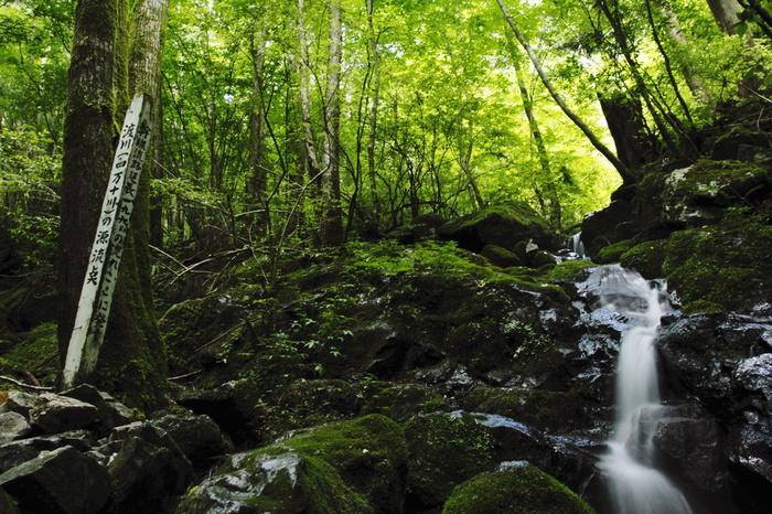 津野町の不入山には四万十川の源流点があります。四国内最長の川、196kmの流れの源はこんなところにあるんですね。このほか、アロマやヨガ、神楽太鼓体験や星座鑑賞などのプログラムが用意されています。